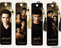 New Moon Bookmarks from Borders - twilight-series photo