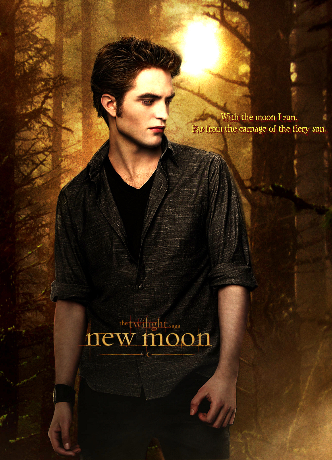 New Moon Edward Poster New Moon Movie Fan Art 7369718