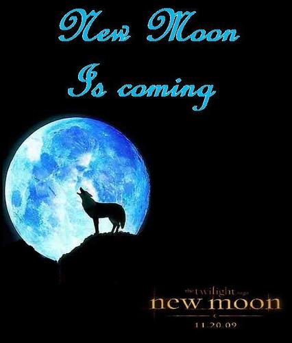 New Moon Is Coming