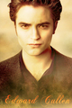 New Moon Posters! - twilight-series photo
