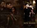 New Moon - team-twilight wallpaper