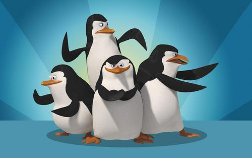 Penguins of madagascar kertas dinding