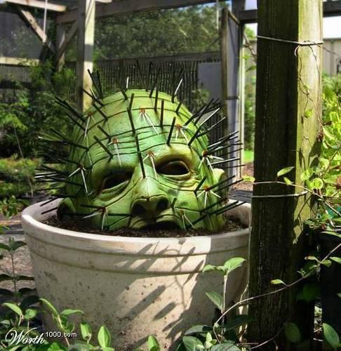 Pinhead Garden