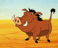 Pumbaa - the-lion-king-1-2 fan art