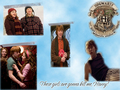 Ron Half Blood Price Quote  - couples-from-harry-potter wallpaper