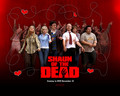 Shaun of the dead - simon-pegg wallpaper