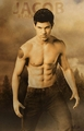 Taylor/Jacob shirtless - twilight-series photo