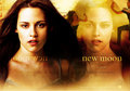 The New moon lover =) - twilight-series photo