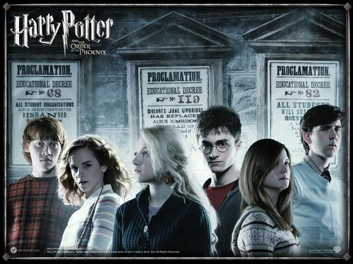 The Whole HP Gang