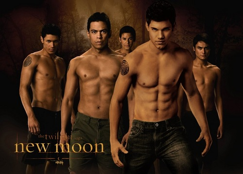 Twilight Series wallpaper probably containing a hunk, a six pack, and skin entitled The Wolf Pack