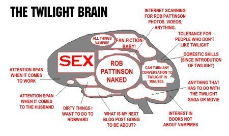 They call it the Twilight brain, i think my brain works like that :D