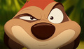 Timon - the-lion-king-1-2 photo