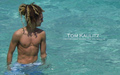 Tom Wallpaper (made by me) - tokio-hotel photo