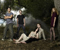 Twilight  Yay!!! - twilight-series photo