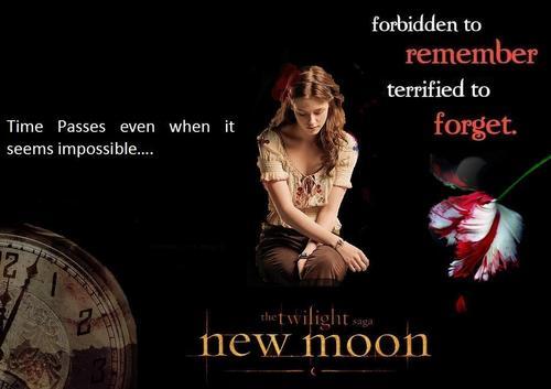 Twilight_Saga!