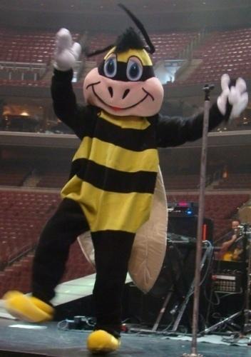 joe as a bee