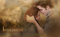 luna Nueva  Wallpaper - Edward y Bella - twilight-crepusculo wallpaper