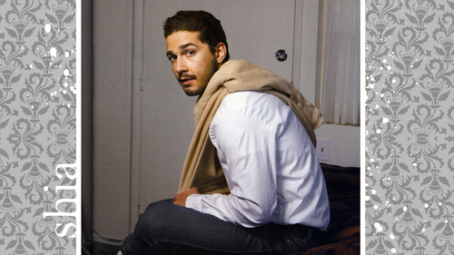 Shia LaBeouf wallpaper possibly with a living room, a drawing room, and a window sede, sedile called shia labeouf wallpaper