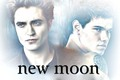 team edward or team jacob ? - twilight-series photo