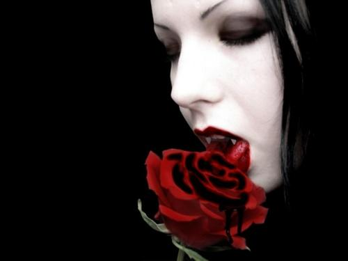 vampire rock!!