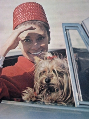 Audrey and Mr. Famous hanging out in the car