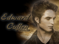 EXCLUSIVE HERE how many edward's name can u see?? guess..