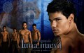 HD Luna Nueva Wallpaper - Los licntropos - twilight-crepusculo wallpaper