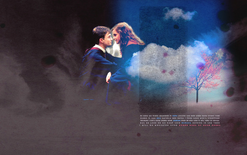 harry dan hermione wallpaper with a konser called Hermione and Harry