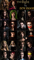 I didn't do this seriously! New Moon vs Twilight - twilight-series photo