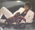 MJ (Thriller, Rolling Stone Version) - michael-jackson photo