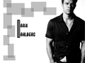 Mark Wahlberg - mark-wahlberg wallpaper