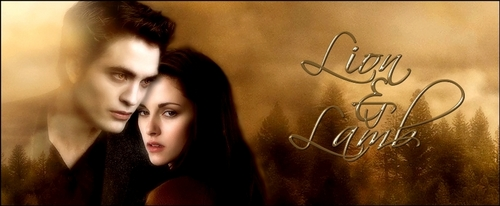 New Moon Banners