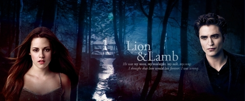 Twilight Series wallpaper with a portrait titled New Moon Headers