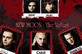 New Moon: The Volturi - twilight-series photo