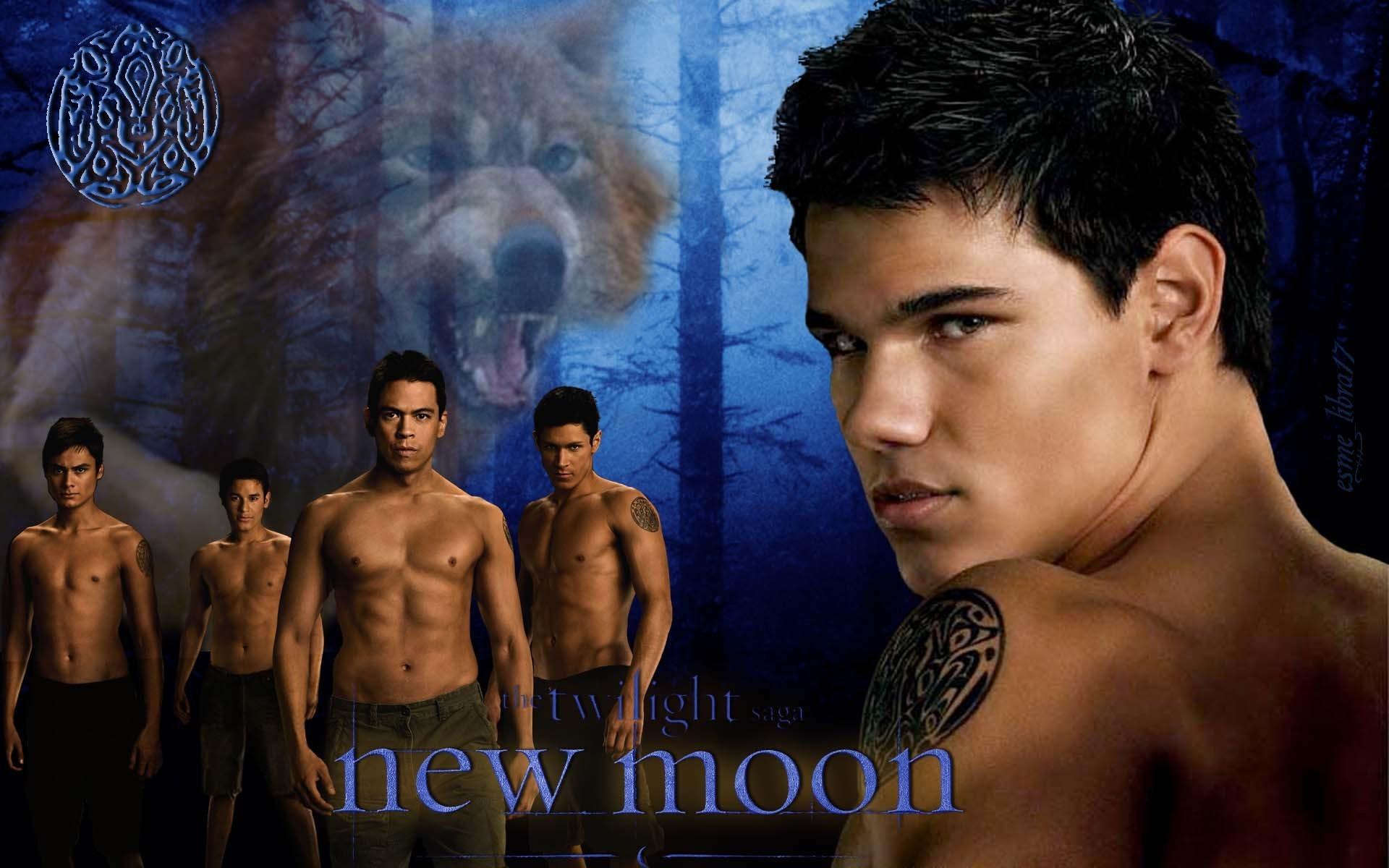new moon wallpaper werewolves twilight series