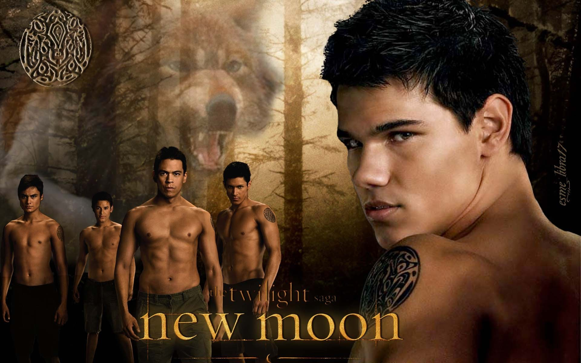 Werewolves-twilight-series
