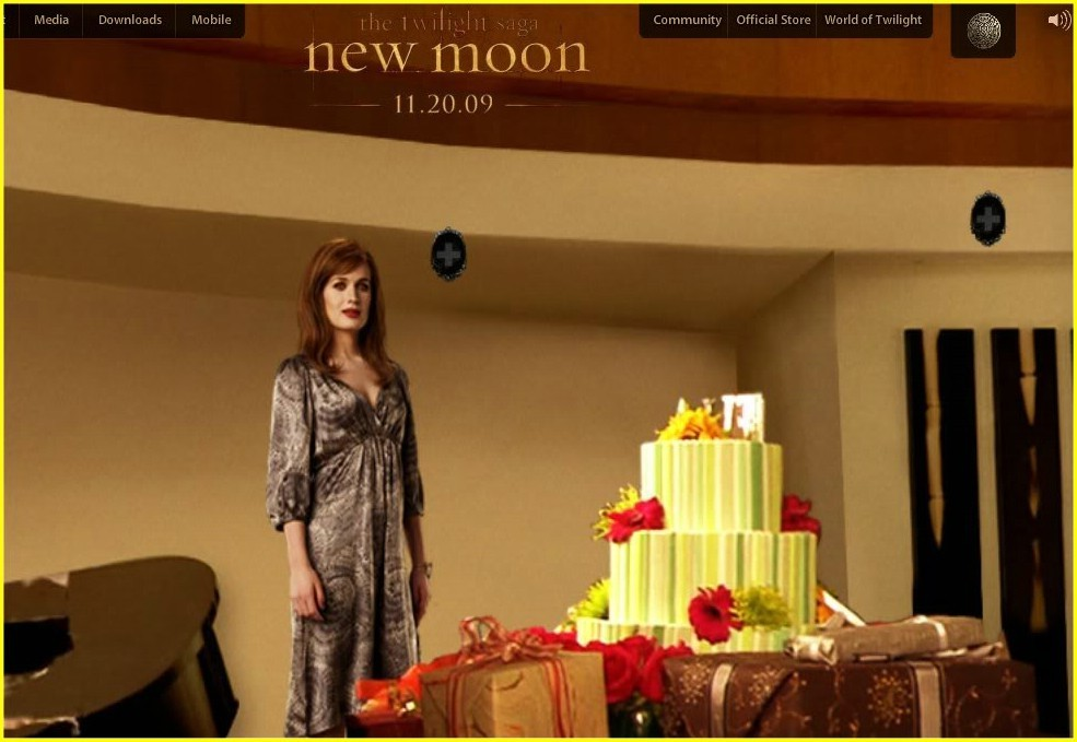http://images2.fanpop.com/images/photos/7400000/New-Moon-twilight-series-7450455-985-679.jpg