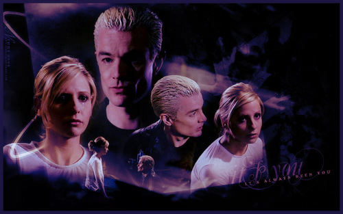 Buffy the Vampire Slayer پیپر وال probably containing a concert, a sign, and a portrait titled Touched ~ Spike/Buffy