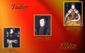 Tudor Heirs - kings-and-queens wallpaper