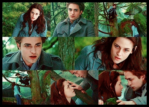 Twilight Picspam