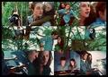 Twilight Picspam - the-cullens fan art