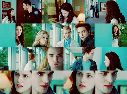 Twilight Obsessors images Twilight Picspam wallpaper and background photos