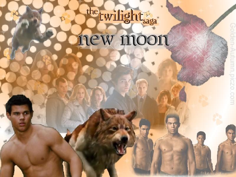 Twilight Saga New Moon New Moon Twilight Saga New