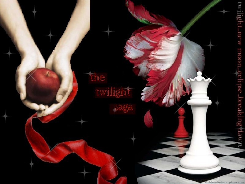 Twilight Series Twilight Saga