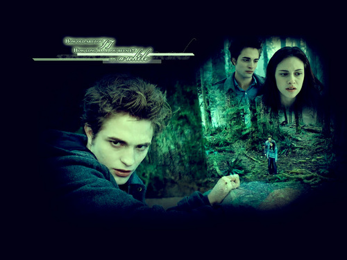 Robert Pattinson wallpaper possibly containing a sign and a street entitled Twilight and New Moon Wallpaper