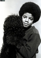 Various Photoshoots / Michael Ochs Archive Photos / Session #1 - michael-jackson photo