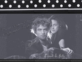 Wallpaper Edward & Bella - twilight-series photo