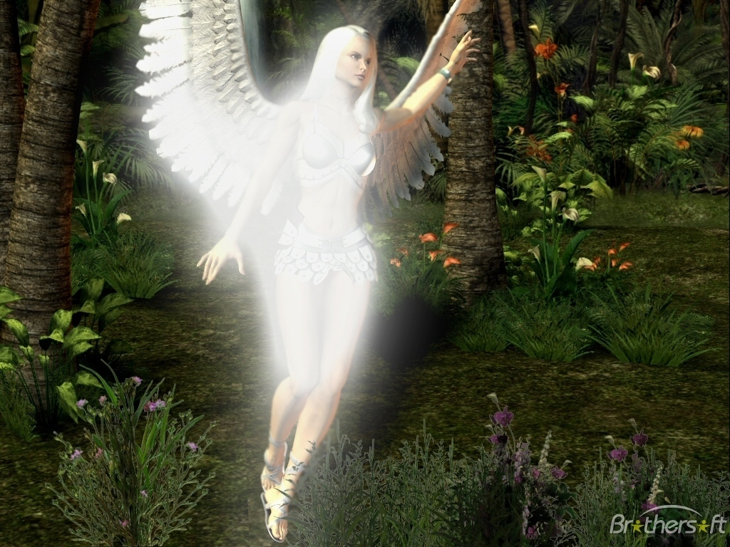 Angel Of The Forest