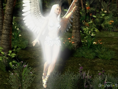 Angels wallpaper entitled Angel Of The Forest