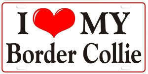 Border 콜리, 콜 리 Logo